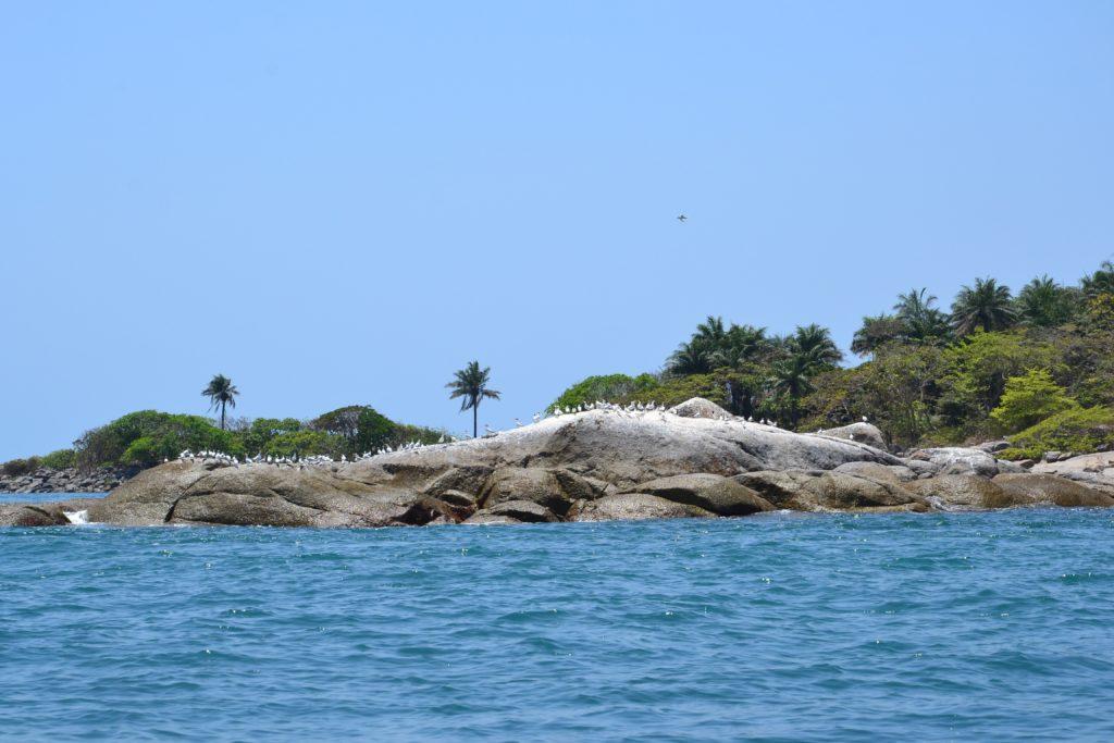 Voyage de pêche en Guinée Conakry avec les caorès